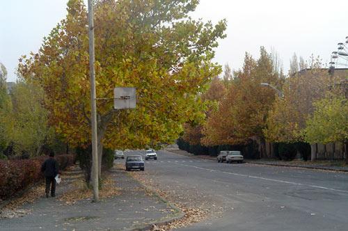 fall01